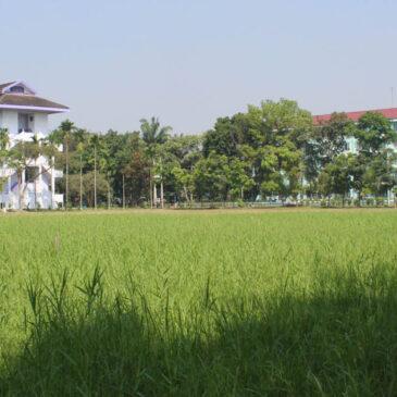 UMA Kelola Kampus Ramah Lingkungan